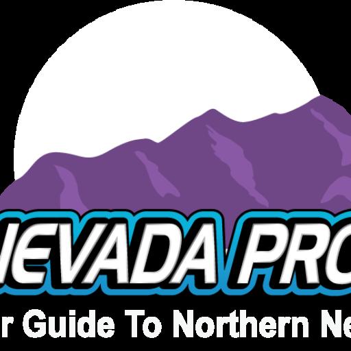 https://northernnevadaproperties.com/wp-content/uploads/2020/07/cropped-NV-LOGO3.png